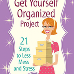The Get Yourself Organized Project - small